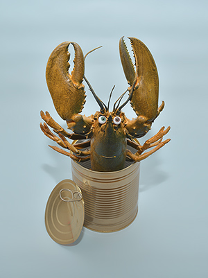 Dosenhummer - tinned lobster